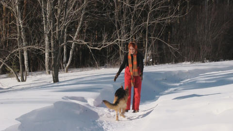 Woman playing with a dog on a snow Stock Video Footage