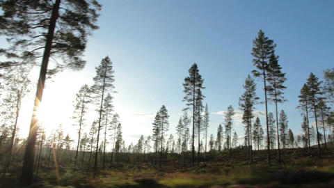 Driving Stock Video Footage
