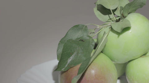 Fresh apples Stock Video Footage