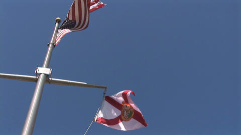 American and Florida flags Stock Video Footage