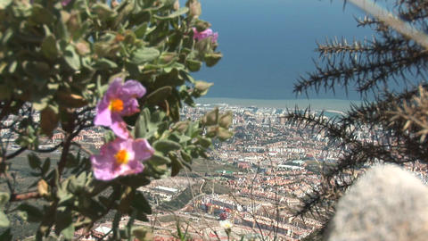 Benalmadena, Spain Stock Video Footage