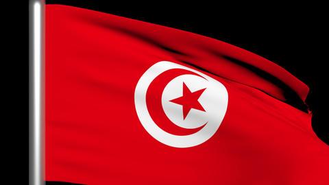 Flag Tunisia 01 Render Animation