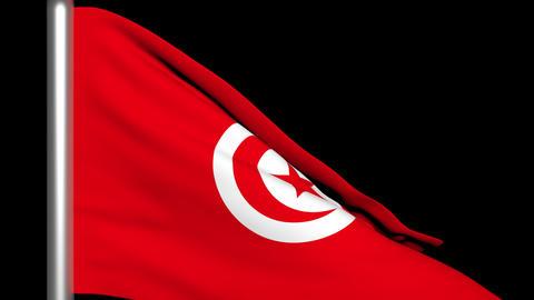 Flag Tunisia 01 Render Stock Video Footage
