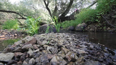 small fast mountain river Footage
