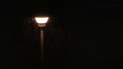 Moth flying around street lamp during rain Stock Video Footage