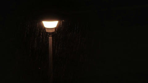 Moth flying around street lamp during rain Footage