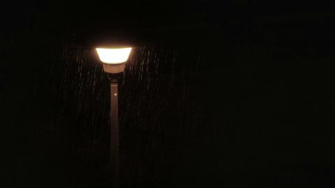 Moth flying around street lamp during rain Stock Video Footage