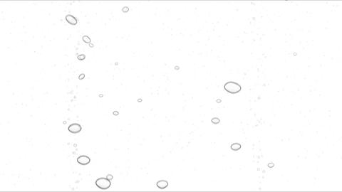 Underwater bubbles on white background with alpha Animation