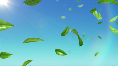 Beautiful Leaves flying in the sky with sun. HD 10 Stock Video Footage