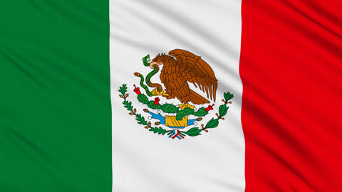 Mexican flag, with real structure of a fabric Stock Video Footage