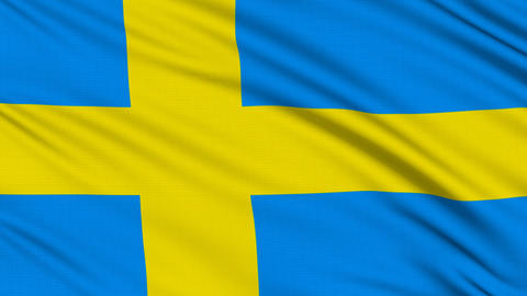 Swedish flag, with real structure of a fabric Stock Video Footage
