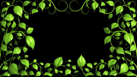 Green Plant pattern is growing on black in HD 1080 Stock Video Footage