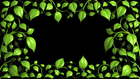 Green Plant pattern is growing on black in HD 1080 Animation