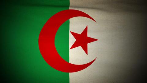 Flag Algeria 04 Stock Video Footage