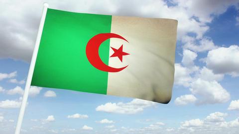 Flag Algeria 02 Stock Video Footage