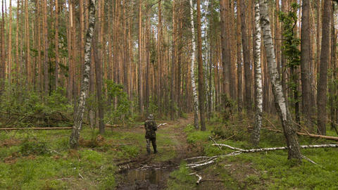 Man in camouflage walking on the footpath in summe Stock Video Footage