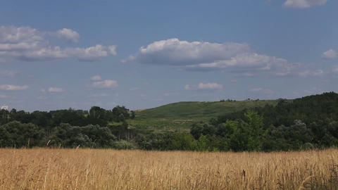 Timelapse with clouds, blue sky, withered grass an Stock Video Footage