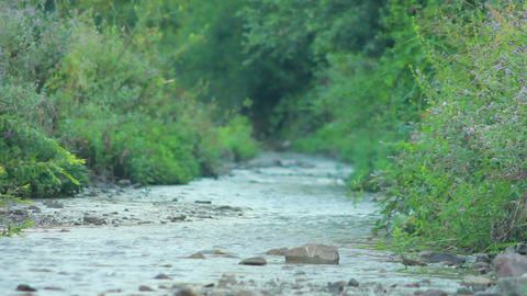 Small Mountain River 12 Stock Video Footage