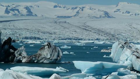Icebergs melt in the sun in a vast blue glacier la Stock Video Footage
