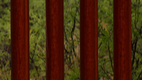 Tilt down the Mexico - US border fence Stock Video Footage
