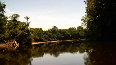 POV shot going down the Amazon River in Brazil Stock Video Footage