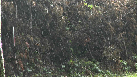 Rain falls heavily during a big storm Stock Video Footage