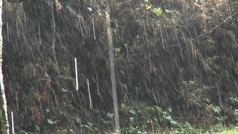 Rain falls heavily during a big storm Footage