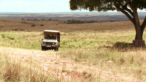 A safari vehicle travels across the plains of Afri Stock Video Footage
