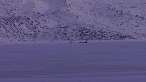 An eskimo dogsled heads across the frozen tundra i Stock Video Footage