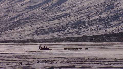 A distant dogsled moves across the Arctic tundra Stock Video Footage