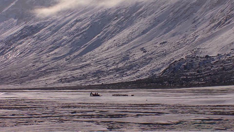 A distant dogsled moves across the Arctic tundra Footage