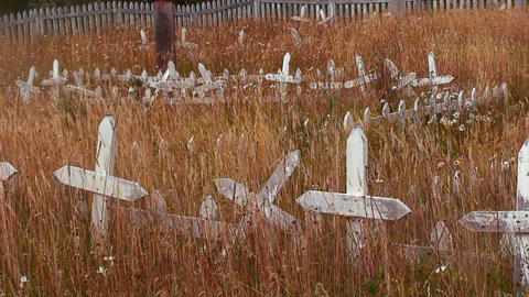 Grass grows in a derelict cemetery Stock Video Footage