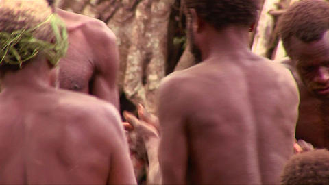 New Guinea men dance in a circle in the jungle Stock Video Footage