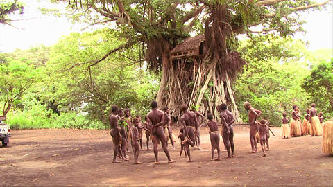 New Guinea men dance in a circle in the jungle Footage
