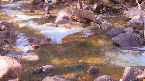 The mountain stream flows through Yosemite Nationa Stock Video Footage