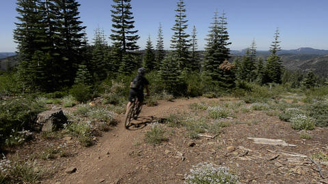 Mountain bikers descending the Downeville Downhill Stock Video Footage