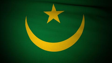 Flag Mauritania 04 Stock Video Footage