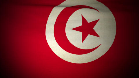 Flag Tunisia 04 Stock Video Footage