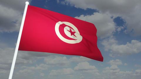 Flag Tunisia 02 Stock Video Footage