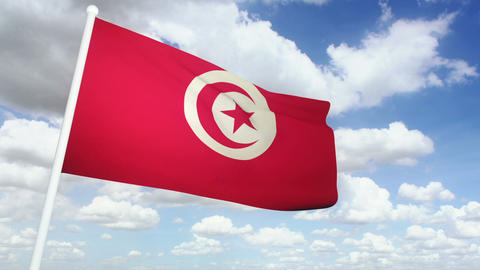 Flag Tunisia 02 Stock Video Footage