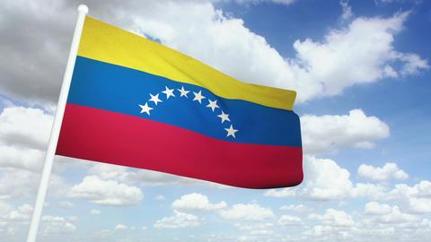Flag Venezuela 02 Stock Video Footage