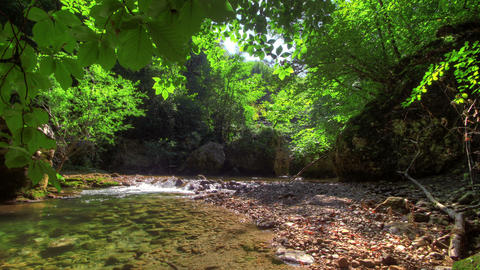 4k. Forest River. HDR Time Lapse shot motorized sl Stock Video Footage