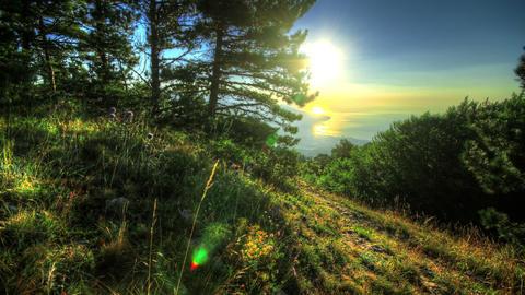 4k. Morning View Of Yalta. HDR Time Lapse Shot Mot Stock Video Footage