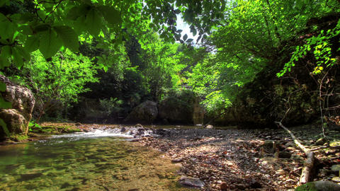 Forest River. HDR Time Lapse shot motorized slider Stock Video Footage