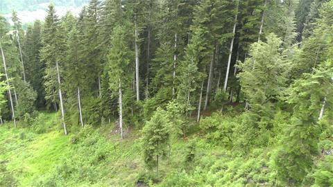 European Alps Kitzbuhel Austria Aerial 9 Footage