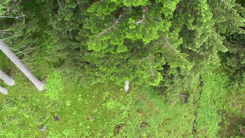 European Alps Kitzbuhel Austria Aerial 43 Stock Video Footage