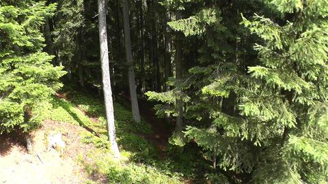 European Alps Kitzbuhel Austria Aerial 53 Stock Video Footage