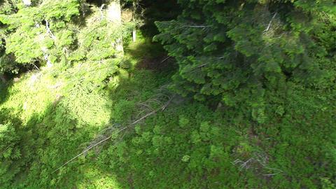European Alps Kitzbuhel Austria Aerial 61 Footage