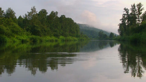 Calm landscape with quiet river in a green forest Stock Video Footage