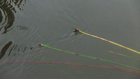 Closeup of ripples on a river surface Stock Video Footage